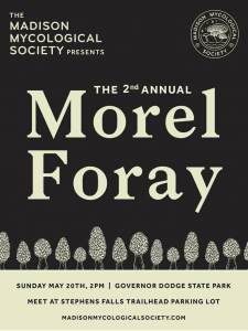 2nd Annual Morel Foray @ Stephens Falls trail (in Governor Dodge State Park)
